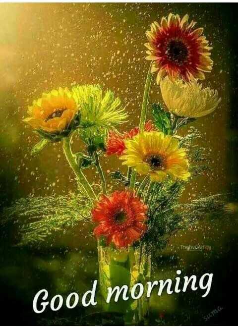 🌞காலை வணக்கம் - ThoVUASTE Good morning SUTTLG - ShareChat