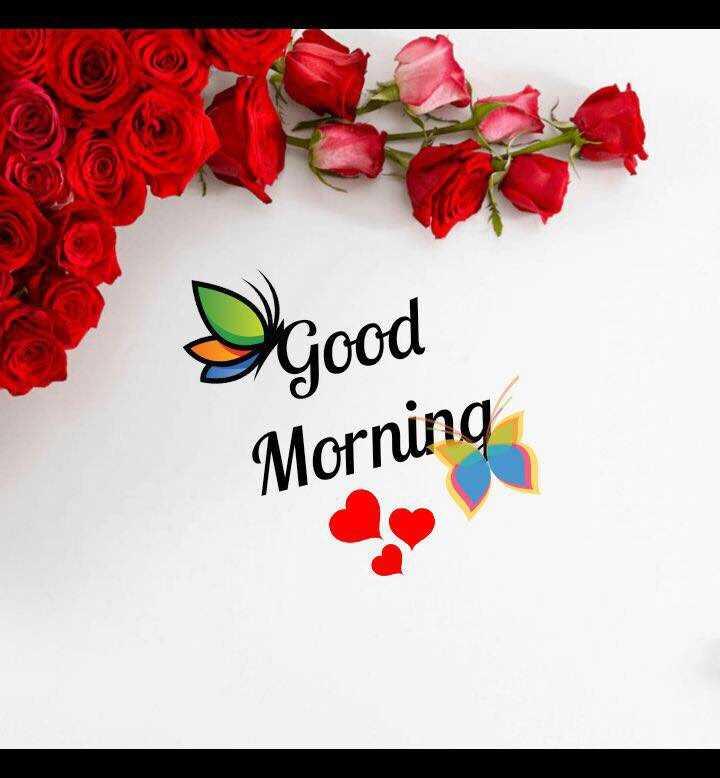🌞காலை வணக்கம் - Dgood Morning - ShareChat