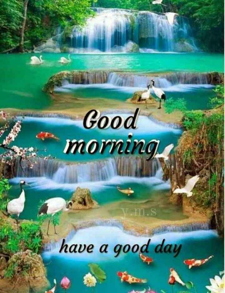 🌞காலை வணக்கம் - Good te morning v . m . s have a good day - ShareChat