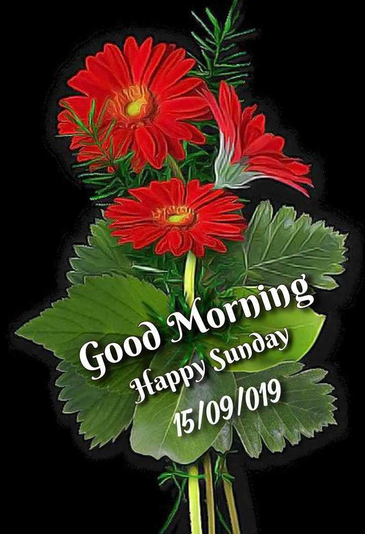 🌞காலை வணக்கம் - Good Morning Jfappy Sunday 15 / 09 / 019 - ShareChat