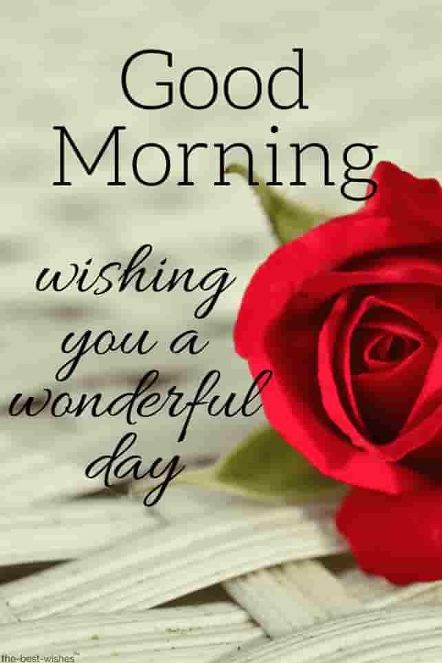 🌞காலை வணக்கம் - Good Morning wishing you a wonderful The - best - wishes - ShareChat