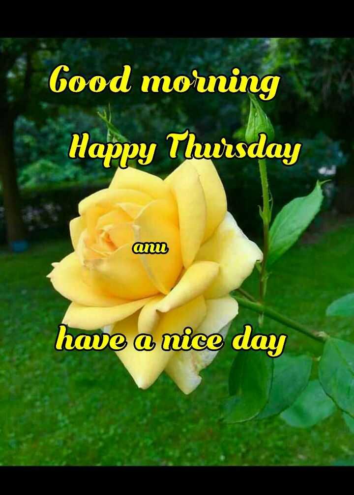 🌞காலை வணக்கம் - Good morning Happy Thursday ann have a nice day - ShareChat