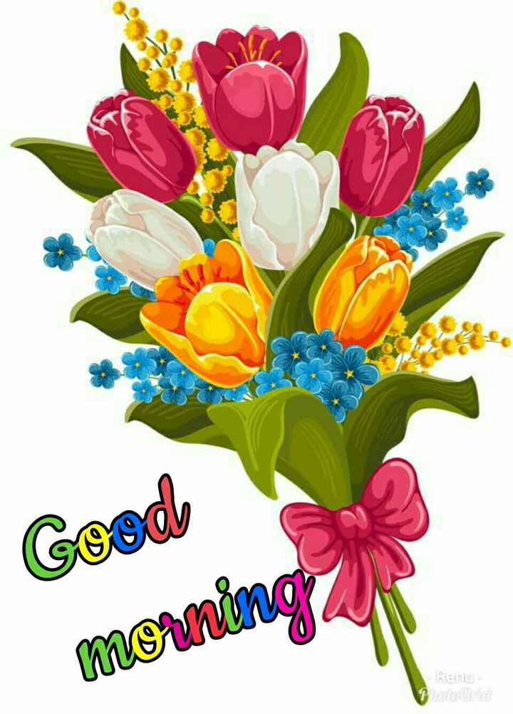 🌞காலை வணக்கம் - Cood morning Renu - ShareChat