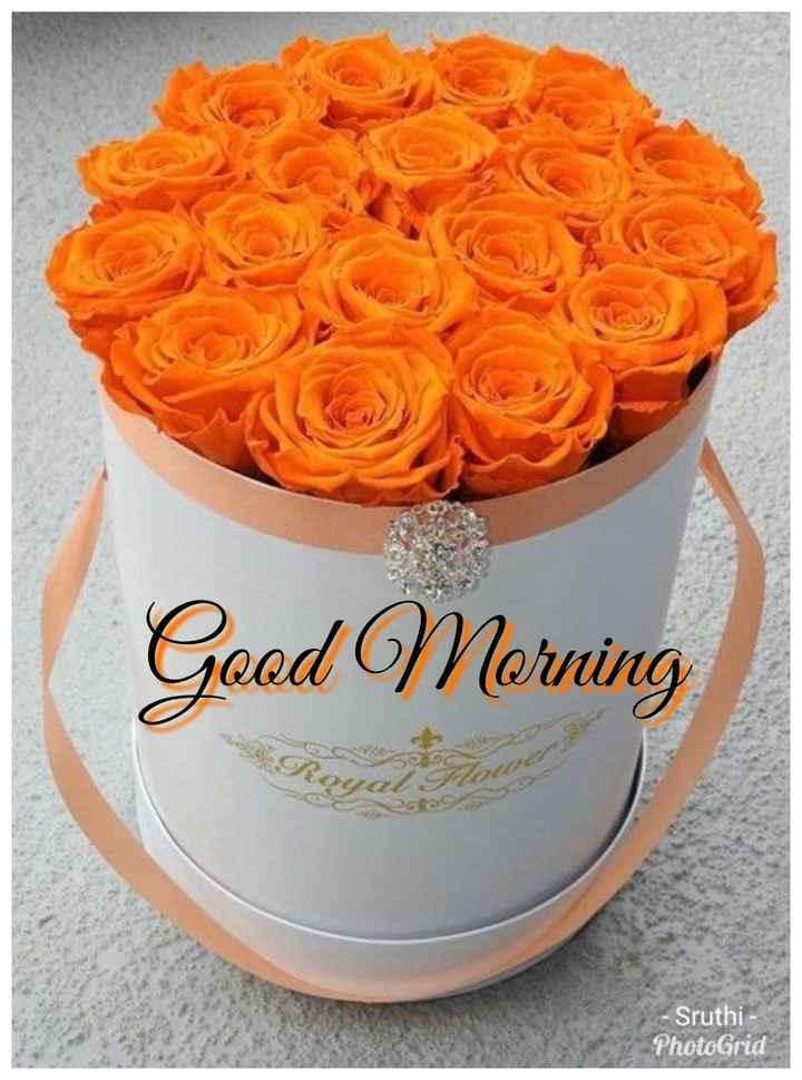 🌞காலை வணக்கம் - Geod Morning - Sruthi - PhotoGrid - ShareChat