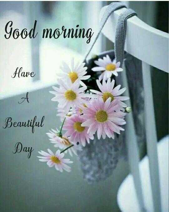 🌞காலை வணக்கம் - Good morning Have Beautiful Day - - ShareChat