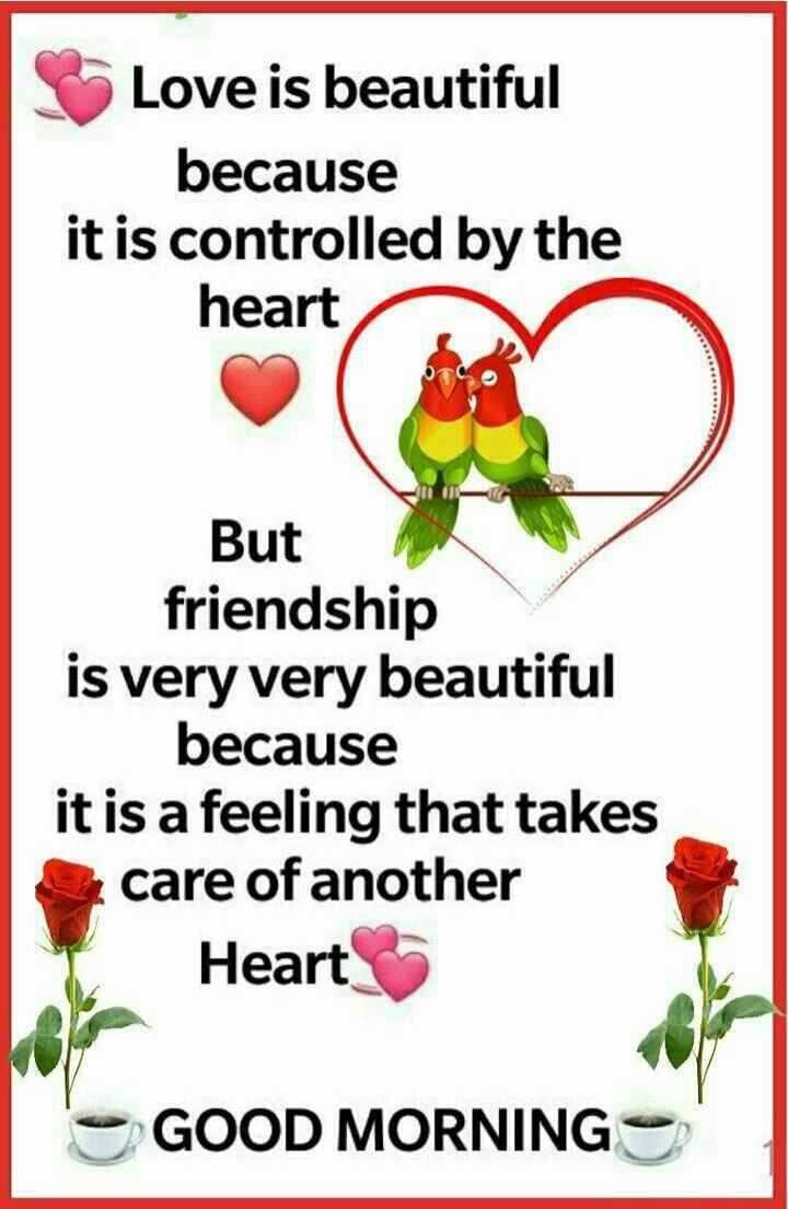 🌞காலை வணக்கம் - Love is beautiful because it is controlled by the heart But friendship is very very beautiful because it is a feeling that takes care of another Heart GOOD MORNING - ShareChat