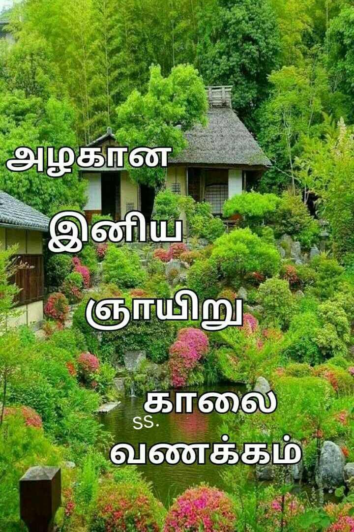 🌞காலை வணக்கம் - அழகான - இனிய - ஞாயிறு காலை வணக்கம் - ShareChat