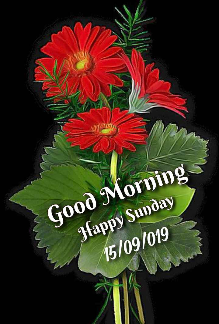 🌞காலை வணக்கம் - Good Morning Happy Sunday 15 / 09 / 019 - ShareChat