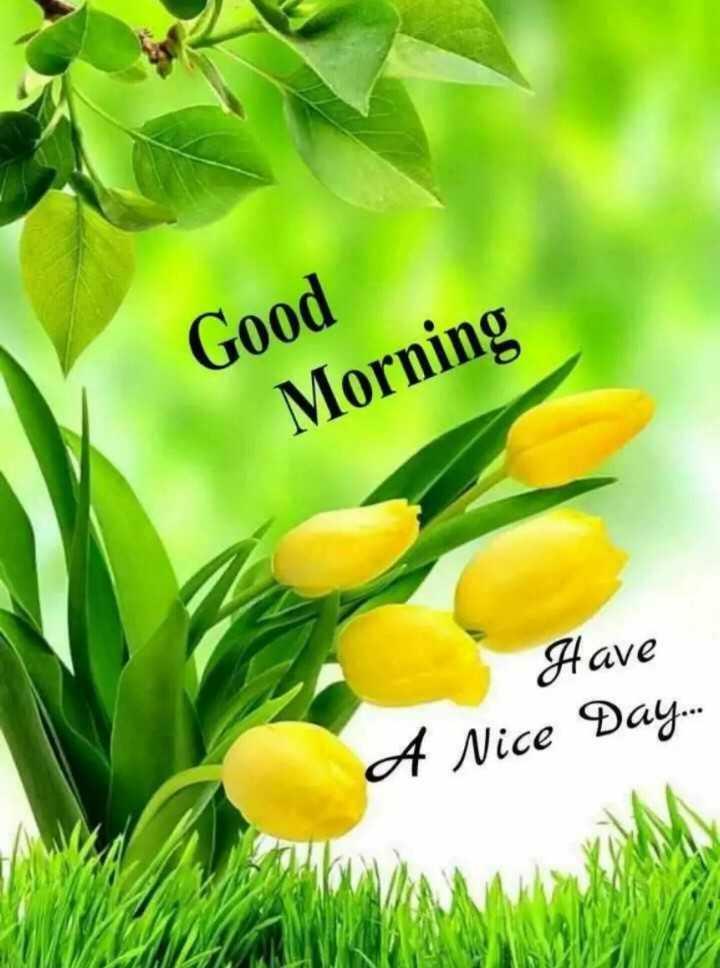 🌞காலை வணக்கம் - Good Morning Have A Nice Day . . . - ShareChat