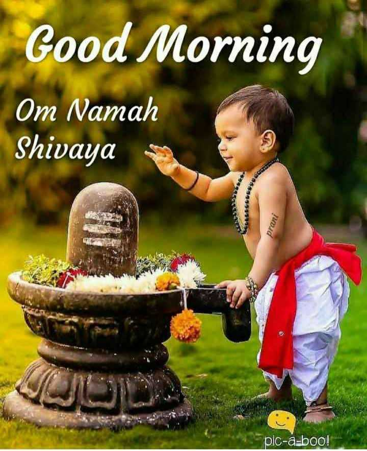 🌞காலை வணக்கம் - Good Morning Om Namah Shivaya pic - a - boo ! - ShareChat