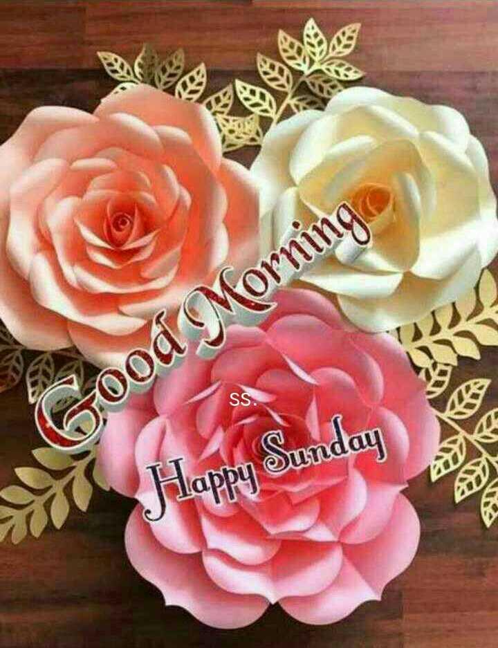 🌞காலை வணக்கம் - SS . Good Morning Flappy Sunday - ShareChat