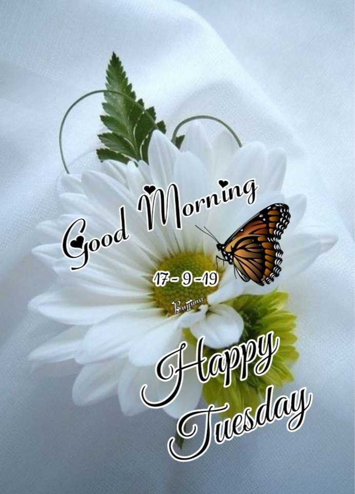 🌞காலை வணக்கம் - Good Morning 47 - 9 - 19 ima Happy Tuesday - ShareChat