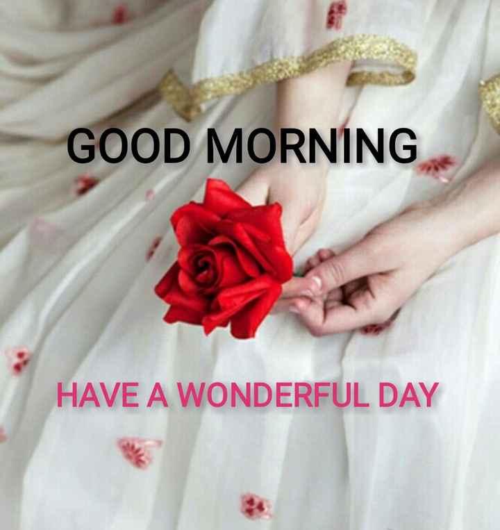 🌞காலை வணக்கம் - GOOD MORNING HAVE A WONDERFUL DAY - ShareChat