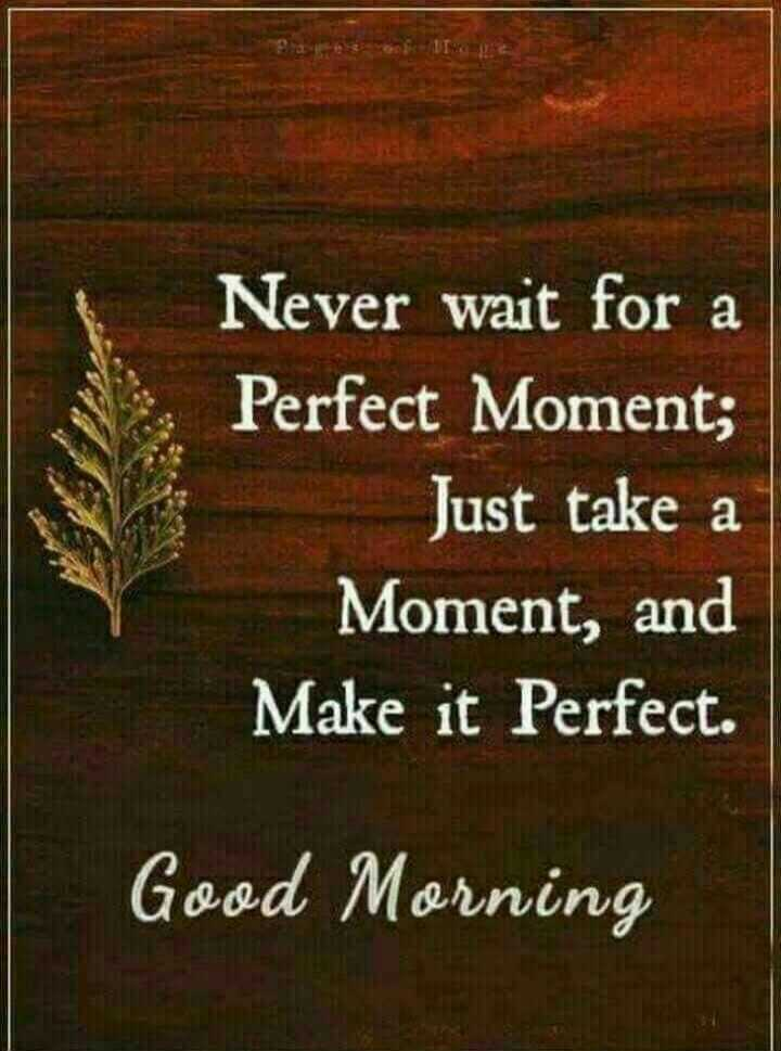 🌞காலை வணக்கம் - a Never wait for a Perfect Moment ; Just take a Moment , and Make it Perfect . Good Morning - ShareChat