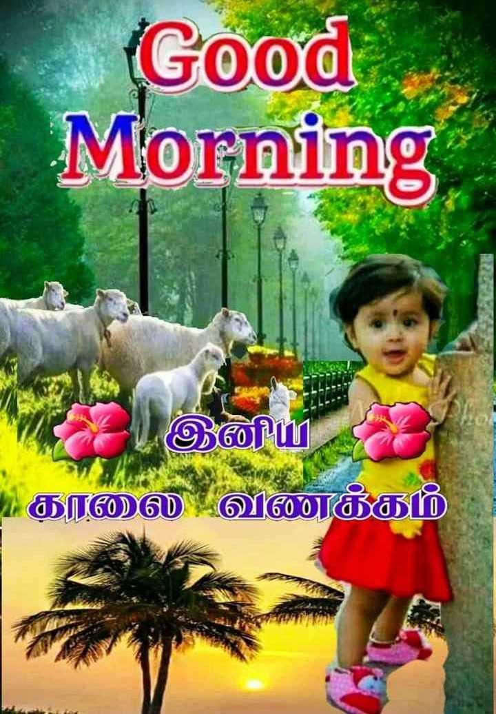🌞காலை வணக்கம் - Good Morning இன்னியர் காலை வணக்கம் - ShareChat