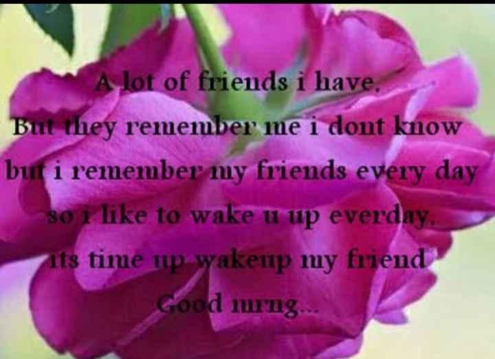 🌞காலை வணக்கம் - A lot of friends i have But they remember me i dont know but i remember my friends every day so i like to wake u up everday nts time up wakeup my friend Good mrng . . . - ShareChat