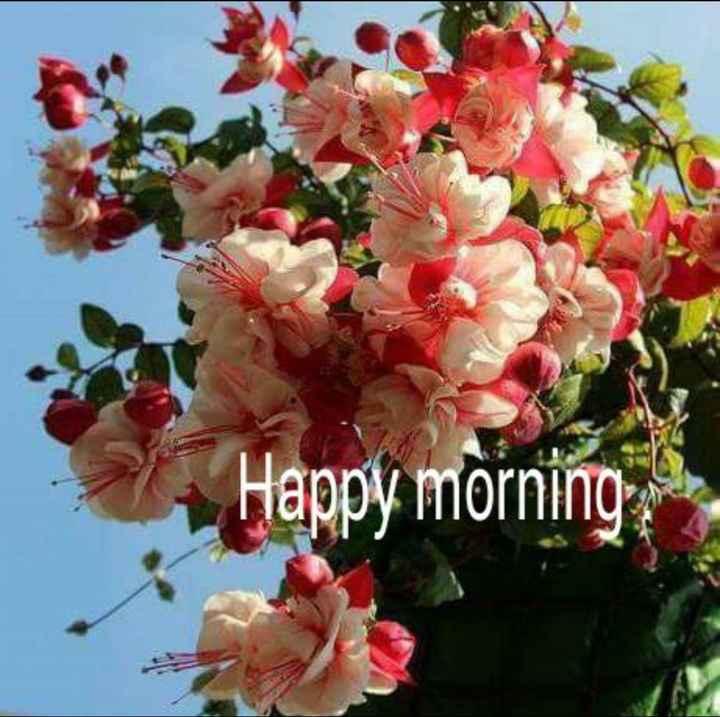 🌞காலை வணக்கம் - Happy morning , - ShareChat