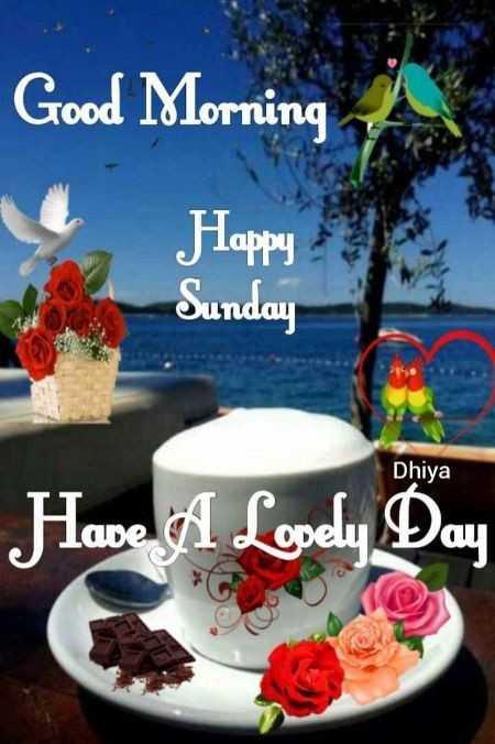 🌞காலை வணக்கம் - Good Morning Happy Sunday Dhiya Have A Lovely Day - ShareChat