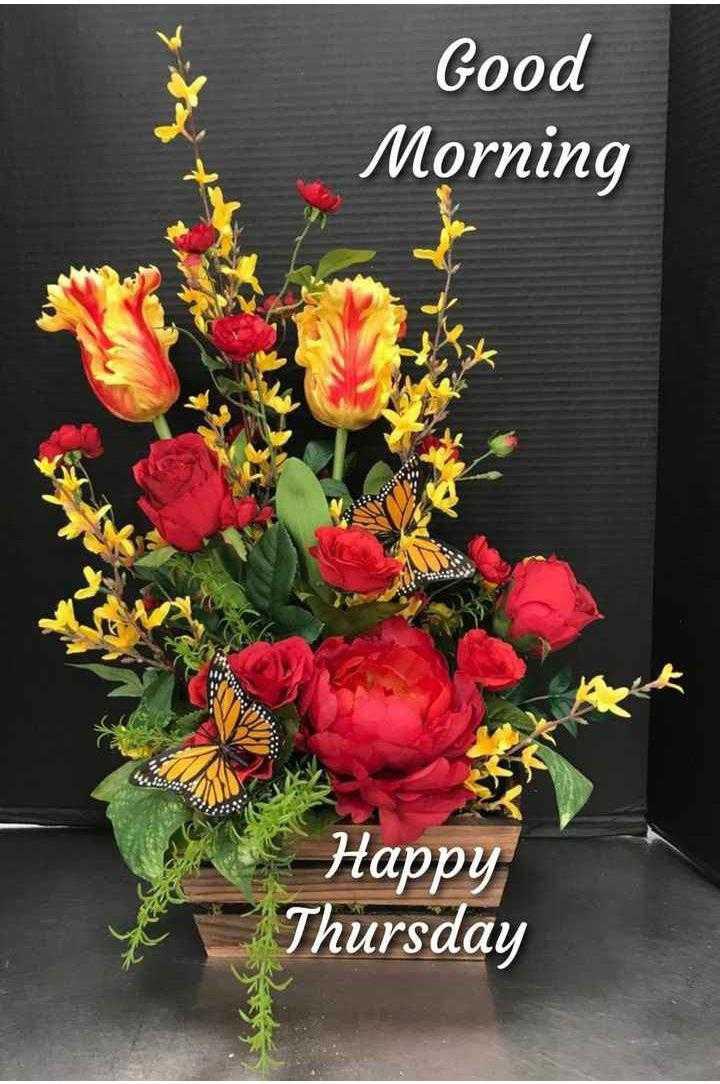 🌞காலை வணக்கம் - Good Morning Happy Thursday - ShareChat