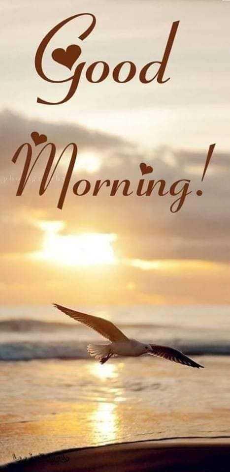 🌞காலை வணக்கம் - Good Morning ! - ShareChat