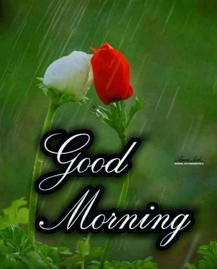 🌞காலை வணக்கம் - Good MATOK . POTOM Morning - ShareChat