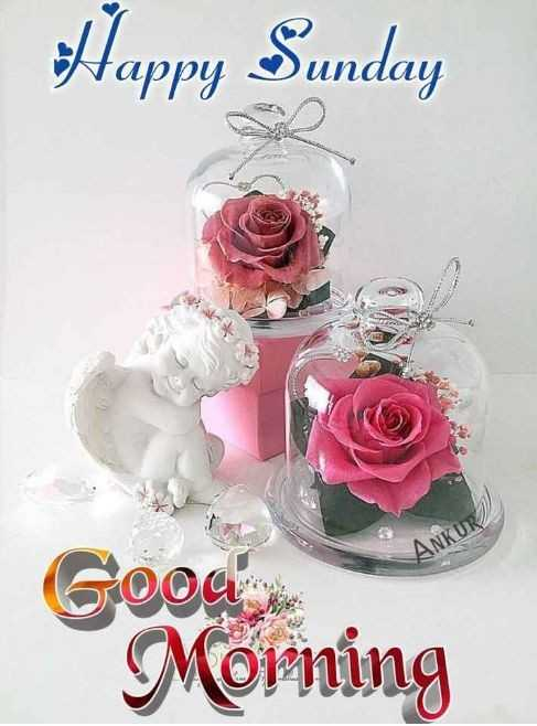 🌞காலை வணக்கம் - Happy Sunday Good Morning - ShareChat