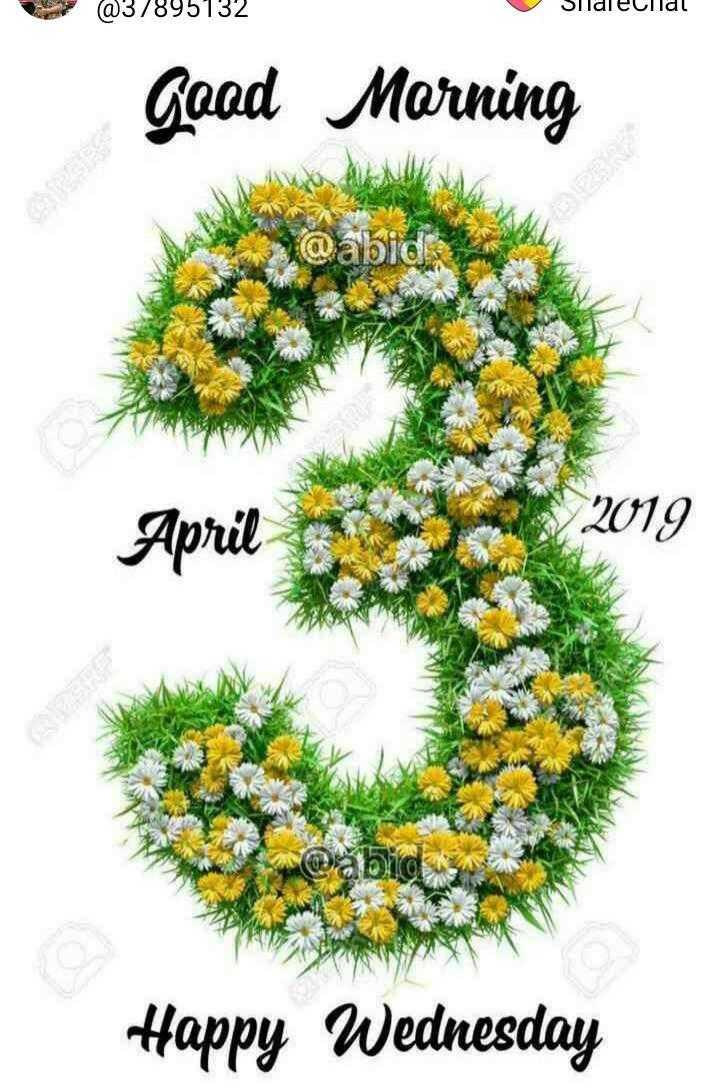 🌞காலை வணக்கம் - @ 37895132 Silalecilal gaad Morning @ abid : April 2019 Happy Wednesday - ShareChat