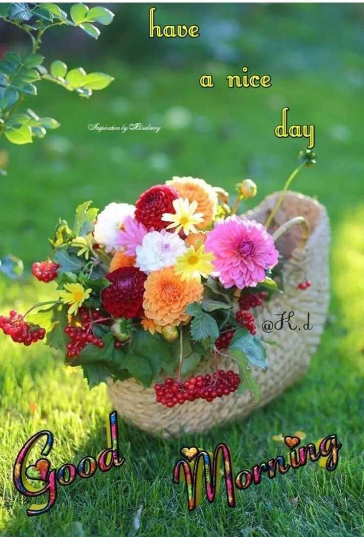 🌞காலை வணக்கம் - A have have a nice opening of reading Buyinatie by Bankowy day a @ fl . d 000 ONKUO - ShareChat