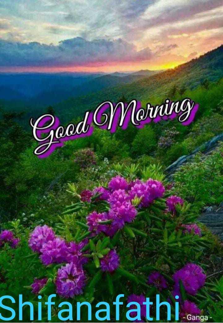 🌞காலை வணக்கம் - Good Morning Shifanafathi Ganga - ShareChat