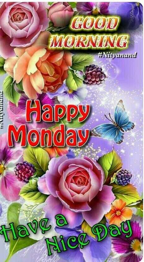 🌞காலை வணக்கம் - GOOD MORNING # Nityanand miminny Happy Monday Have Nice Day - ShareChat