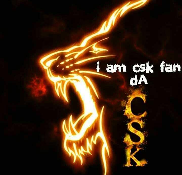 🏏 கிரிக்கெட் - i am csk fan QA - ShareChat