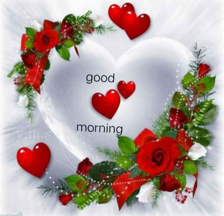 🤩 சண்டே கலாட்டா - good morning - ShareChat