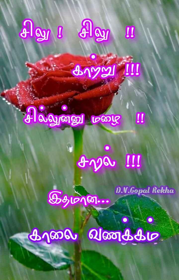 🤩 சண்டே கலாட்டா - சிலு ! சிலு ! ! க19 ) சலஷன்னு மழை சல்ல DN . Gopal Rekha இதமான . . . காலை வணக்கம் , - ShareChat