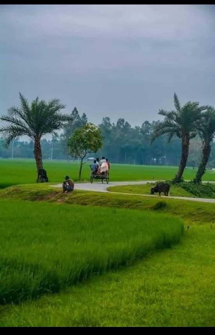 செல்வராஜ் - ShareChat