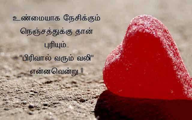 🎼 டக்குனு மியூசிக் - ShareChat