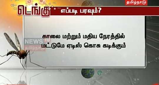 டெங்கு காய்ச்சல் - தமிழ்நாடு டெங்கு எப்படி பரவும் ? NEWS 10 காலை மற்றும் மதிய நேரத்தில் மட்டுமே ஏடிஸ் கொசு கடிக்கும் - ShareChat