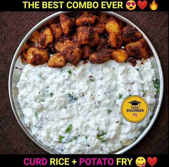 தமிழர் உணவு - THE BEST COMBO EVER Tamil ENGINEER CURD RICE + POTATO FRY - ShareChat