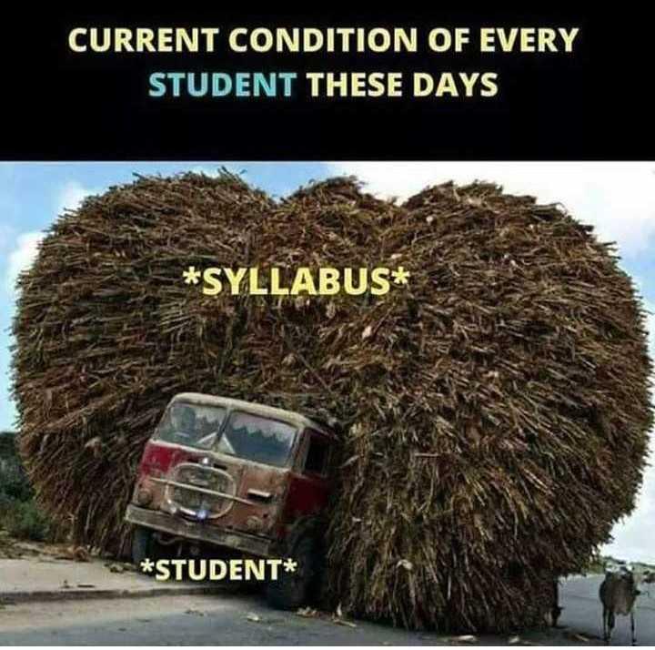 😅 தமிழ் மீம்ஸ் - CURRENT CONDITION OF EVERY STUDENT THESE DAYS * SYLLABUS * * STUDENT * - ShareChat