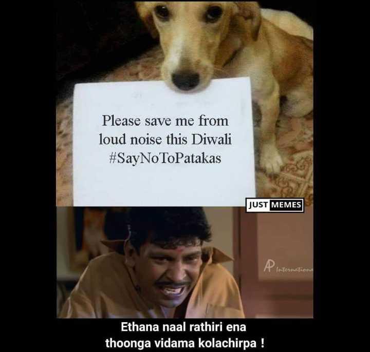 🗣தமிழ்ல சொன்னா பரிசு - Please save me from loud noise this Diwali # SayNoToPatakas JUST MEMES A Internationa Ethana naal rathiri ena thoonga vidama kolachirpa ! - ShareChat