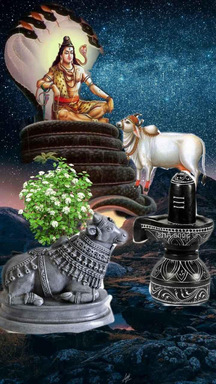 🕍 திருப்பதி பாலாஜி - HOZ OOOOOOOOOOOOOO - ShareChat