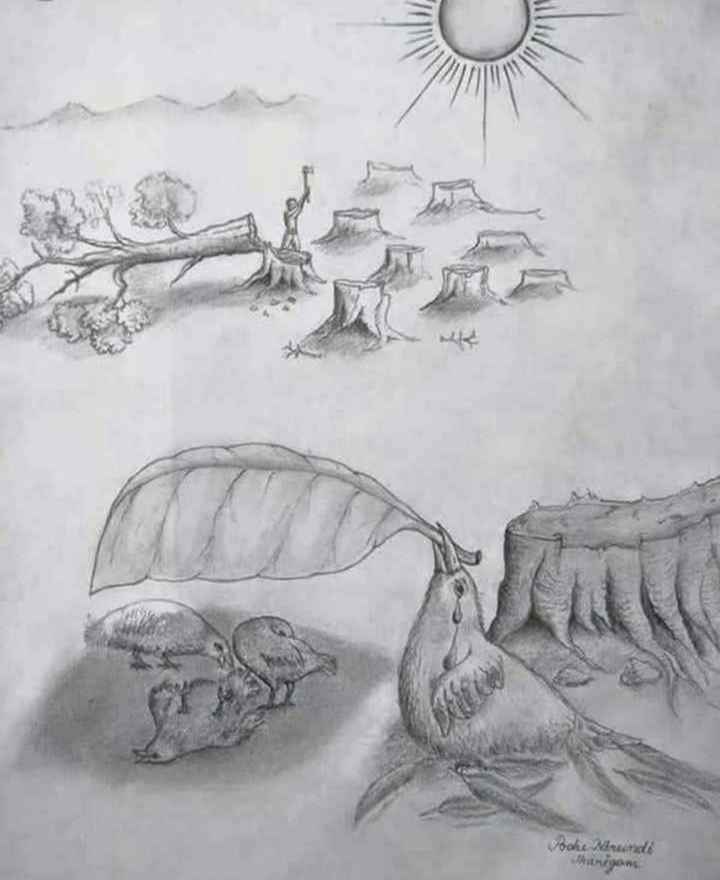 🤔தெரிந்து கொள்வோம் - Poche Mundi Jangoms - ShareChat