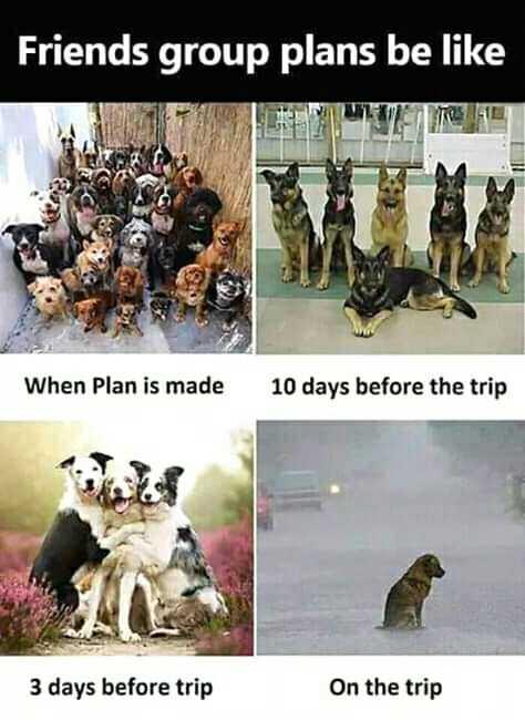 👫 நம் வாழ்கை - Friends group plans be like When Plan is made 10 days before the trip 3 days before trip On the trip - ShareChat