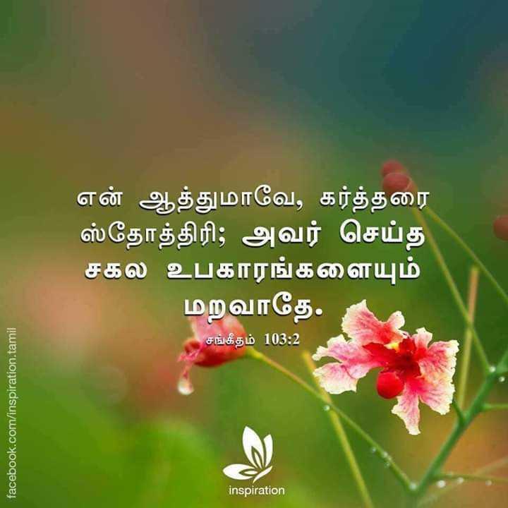 🙏பிரார்த்தனை - என் ஆத்துமாவே , கர்த்தரை ஸ்தோத்திரி ; அவர் செய்த ' சகல உபகாரங்களையும் மறவாதே . சங்கீதம் 103 : 2 facebook . com / inspiration . tamil inspiration - ShareChat