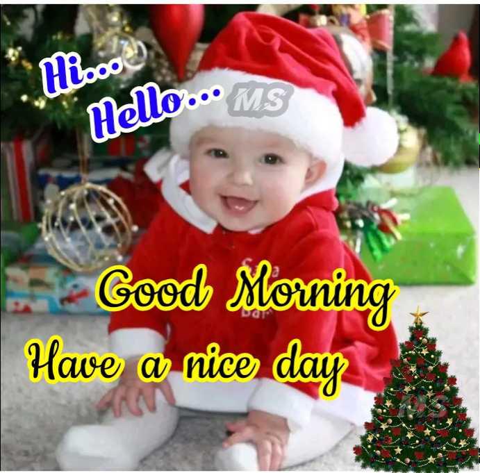 🙏பிரார்த்தனை - Misoo mello . . . MS Good Morning Have a nice day - ShareChat