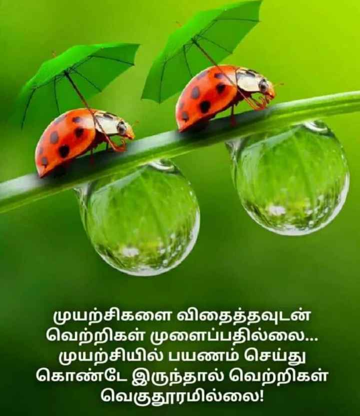 புகைப்படம் - ShareChat
