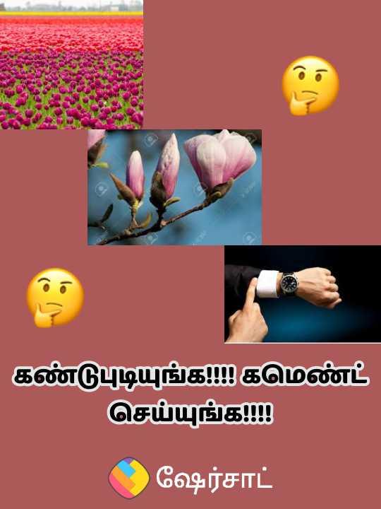 🤔 புதிர்கள் - கண்டுபுடியுங்க கமெண்ட் செய்யுங்க ! ! ( C ) ஷேர்சாட் - ShareChat