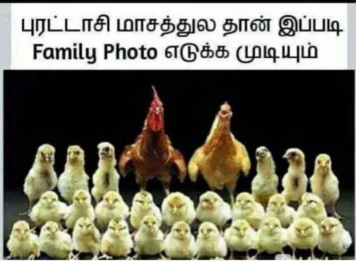 🤔 புதிர்கள் - புரட்டாசி மாசத்துல தான் இப்படி Family Photo எடுக்க முடியும் - ShareChat