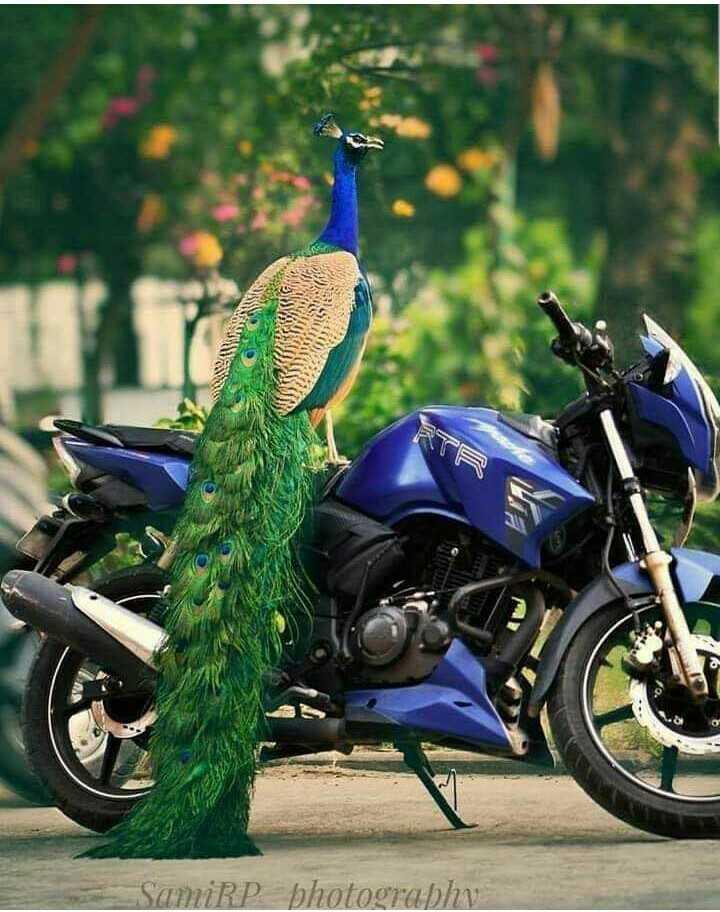 பைக் & கார் - SamiRP photography - ShareChat