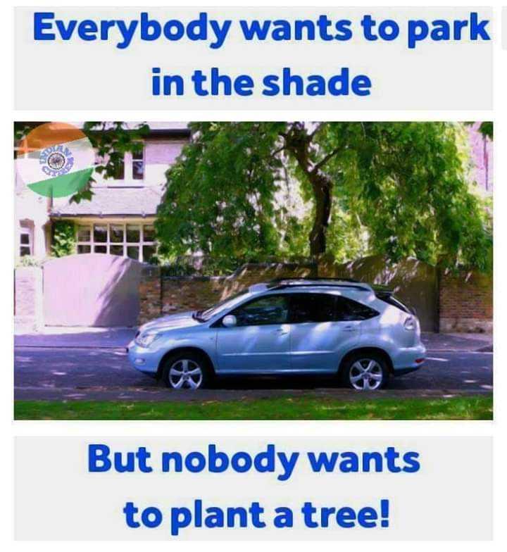 🌳 மரம் வளர்ப்போம் 🌳 - Everybody wants to park in the shade But nobody wants to plant a tree ! - ShareChat