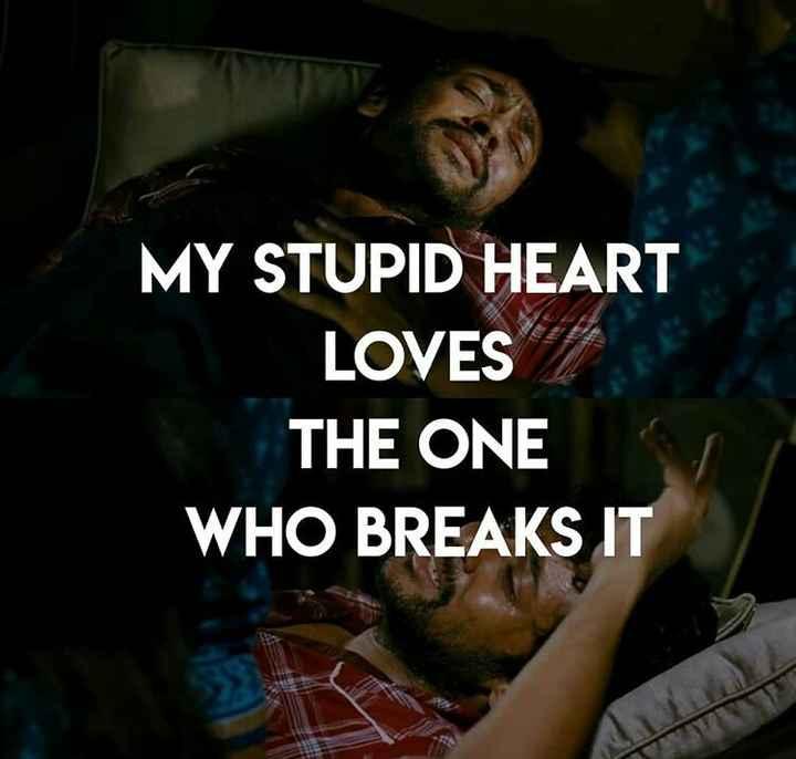 யாரையும் புரிந்து கொள்ள முடியவில்லை - MY STUPID HEART LOVES THE ONE WHO BREAKS IT - ShareChat